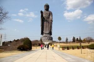 Không thể bỏ qua chuyến du lịch đến Ibaraki, Nhật Bản 1