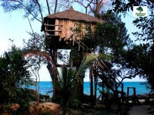 Tận hưởng cảm giác ngủ trên cây khi đến đảo Koh Rong 1