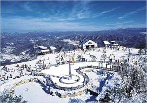 Khu trượt tuyết YANJI PINE - Hàn Quốc