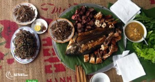 Ăn trưa trên đảo Dừa